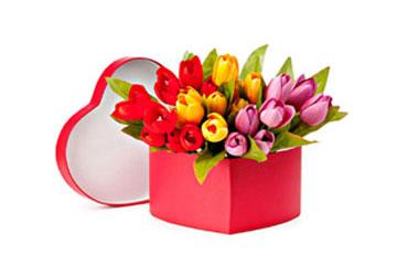 Dovanok gėles ir ne tik - ŽanosGėlės.lt